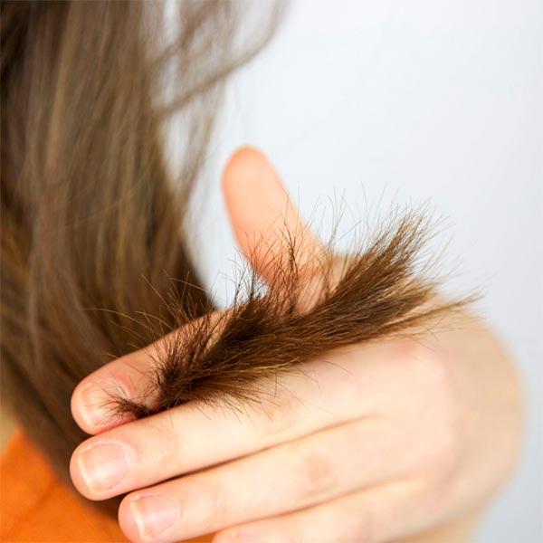 Секутся кончики волос что делать